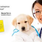 Leptospirose canina é tema de prêmio