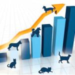 Manejo populacional de cães e gatos