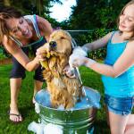 Banho caseiro também exige cuidados