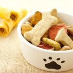 Boa nutrição garante saúde e disposição dos pets