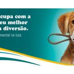 Cinomose: doença contagiosa ataca cães e furões