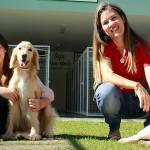 Hotel para pets é solução para quem vai viajar nas férias