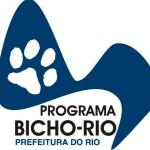 Bicho Rio faz mais de 35 mil esterilizações até novembro de 2013