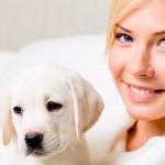 Estudo mostra vínculo de filhotes de cães com donos