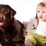 Contato do bebê com animais de estimação reduz risco de alergia