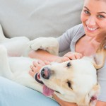 E-books ajudam a cuidar bem do seu pet