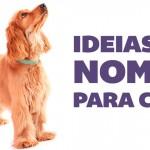Ideias de nomes para cães