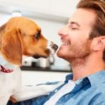 Pesquisa revela preferência por animais de estimação na América Latina