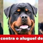 Campanha contra uso de cães para segurança privada