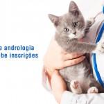 Curso online de andrologia veterinária recebe inscrições