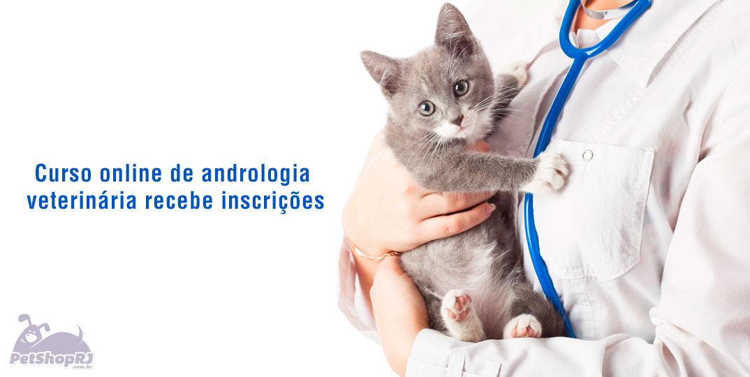 Curso online de andrologia veterin ria recebe inscri es for Curso de interiorismo online