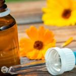 Homeopatia ganha espaço no tratamento de doenças dos animais