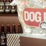 Cerveja para cachorros na versão tipo exportação