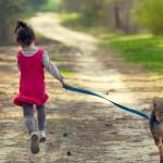 Dicas para a hora do passeio com seu cão