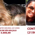Recompensa de R$ 5 mil por Yorkshire Terrier sequestrada