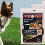 Para garantir o passeio com o seu pet