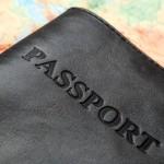 Um alerta sobre o passaporte para viagens de cães e gatos