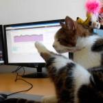 Animais de estimação ganham espaço em empresas japonesas