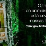 Aplicativo no Facebook ajuda a combater tráfico de animais selvagens