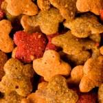Certificação sanitária pode comprometer exportações de pet food