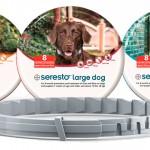 Coleira protege cães e gatos de parasitas