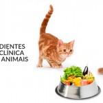 E-book trata de alimentação natural para pets