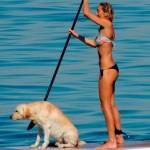 Rio tem campeonato de Stand Up Dog neste final de semana