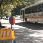 Animais domésticos poderão viajar em transporte público no Rio