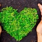 Em busca da conscientização ambiental