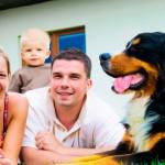 Projeto prevê espaço para pets no Minha Casa, Minha Vida