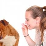 Cães rejeitam quem trata mal seus donos