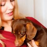 Cinco perguntas básicas antes de adotar um pet