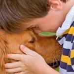 Companhia de pets ajuda a ter coração mais saudável