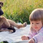 Animal de estimação ou um filho?