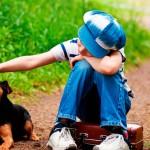 Compromissos de quem quer ter um pet em casa