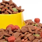 Exportações de produtos pet em alta
